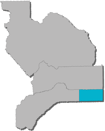 Eastern Nevada County Map